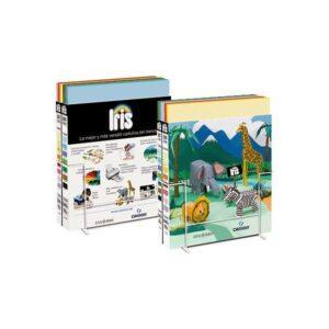 GUARRO CANSON Expositor cartulina IRIS 200 Hojas 50×65 cm 15 colores surtidos Caja A
