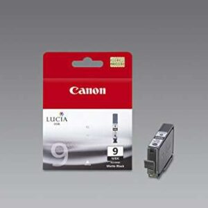 CANON Cartuchos inyeccion PGI-9MBK Negro 1033B001