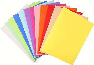 EXACOMPTA Subcarpetas Foldyne Caja 100 ud A4/folio Cartulina reciclada Colores surtidos 250 G