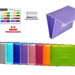 CLASIFICADOR OFFICEBOX 12 DIVISIONES COLOR LINE 41211