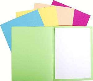 EXACOMPTA Subcarpetas Foldyne Caja 100 ud A4/folio Cartulina reciclada Colores surtidos 180 G 420000